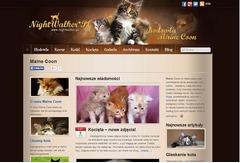 Nightwalker *PL - hodowla kotów Maine Coon